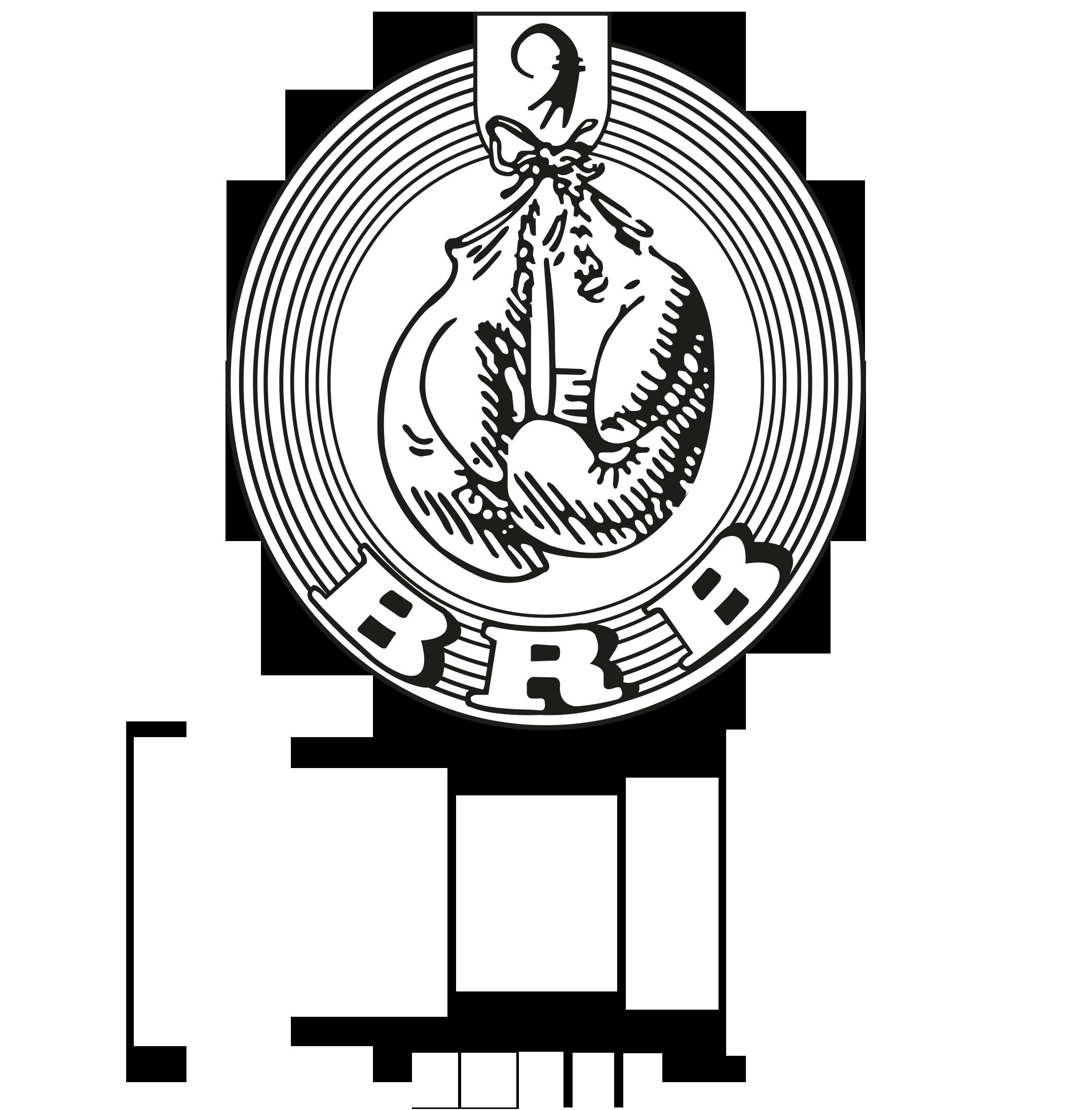 BOXRING BASEL
